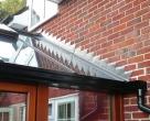 Chatfield_Contemporary_range_oak_timber_conservatory__8_-1663