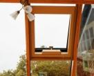 Chatfield_Richmond_Oak_contemporary_oak_conservatory__1_-2076