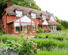Chatfield_Richmond_Oak_contemporary_oak_conservatory__9_-2071